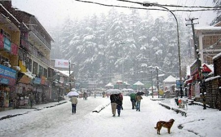 Current temperature in Manali